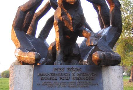 Historia Dżoka jest przez niektórych uważana za jedną z legend Krakowa. Opowiada o psie, którego właściciel w tragicznych okolicznościach zmarł na atak serca w pobliżu Ronda Grunwaldzkiego. Pies czekał tam przez rok na swojego pana.