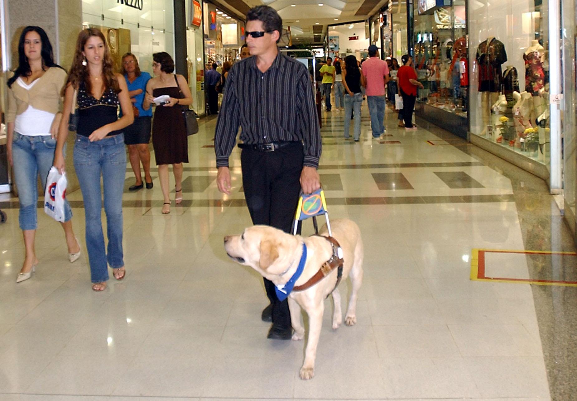 Zdjęcie przedstawia mężczyznę wraz z psem przewodnikiem. Idą prawdopodobnie przez centrum handlowe, mężczyzna ma okulary, a pies idzie przed nim. Wokół widać ludzi oraz sklepy.