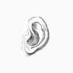 Ilustracja przedstawia ucho ze starej ryciny narysowane cienkimi kreskami. Jest zmultiplikowane - na obrazku pojawia się 5 uszu.