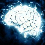 na zdjęciu widoczny jest ludzki mózg w prześwietleniu