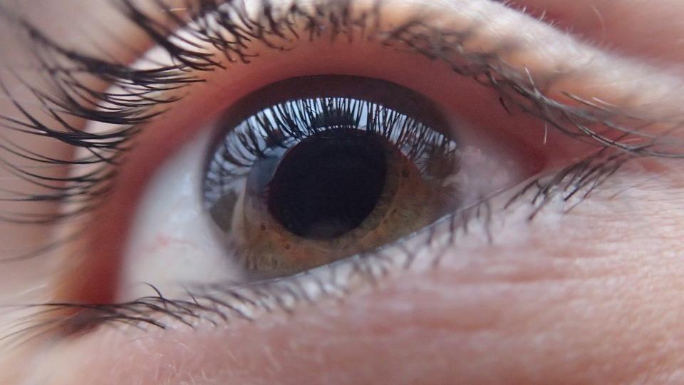 zdjęcie przedstawia oko w przybliżeniu