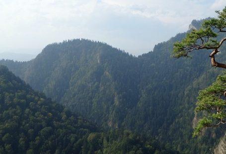 piękny krajobraz Pienin