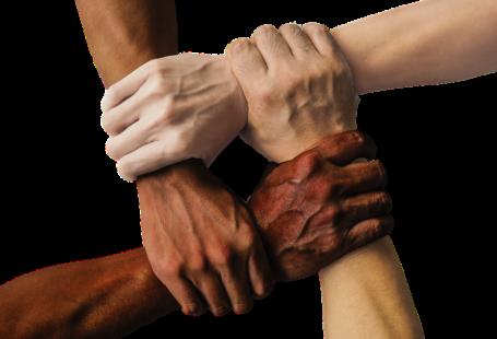 Cztery dłonie o różnym odcieniu skóry złączone jednym uściskiem symbolizujące równość i różnorodność.