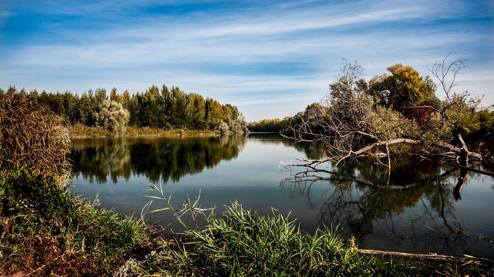 zdjęcie przedstawia piękny krajobraz natury: płynąca rzeka wśród drzew i zarośli
