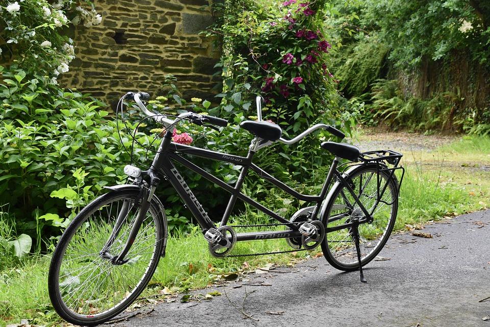 zdjęcie przedstawia stojący w ogrodzie tandem. Jest to rower z podwójną kierownicą i siedziskiem.