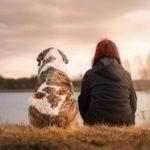 człowiek i pies siedzący obok siebie. Zdjęcie ukazuje plecy dwóch postaci, i pies i człowiek tutaj kobieta, zwrócone są w stronę stawu, który znajduje się przed nimi